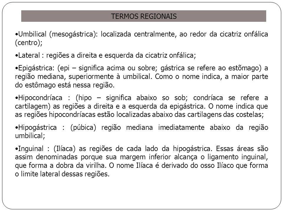 TERMOS REGIONAIS Umbilical (mesogástrica): localizada centralmente, ao redor da cicatriz onfálica (centro);