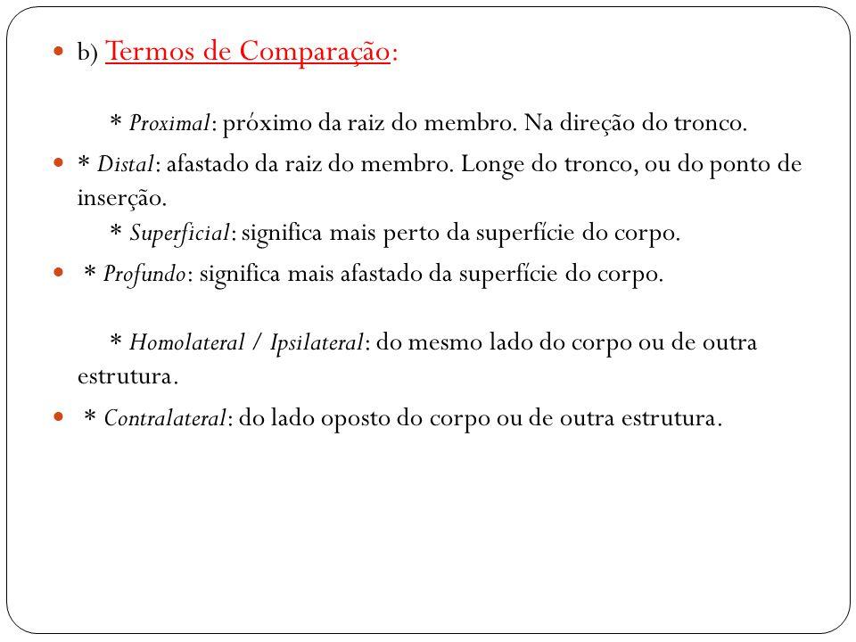 b) Termos de Comparação:. Proximal: próximo da raiz do membro
