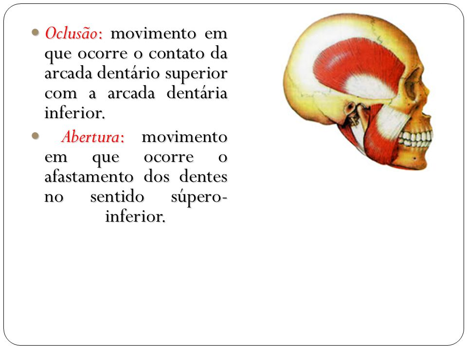 Oclusão: movimento em que ocorre o contato da arcada dentário superior com a arcada dentária inferior.