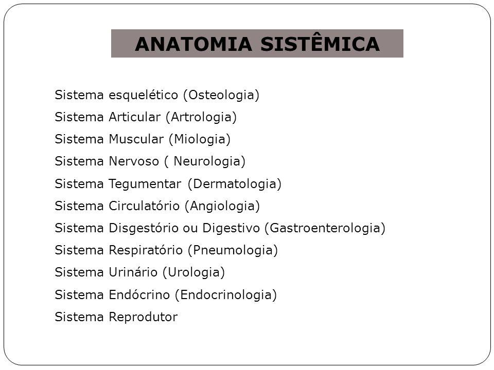 ANATOMIA SISTÊMICA Sistema esquelético (Osteologia)