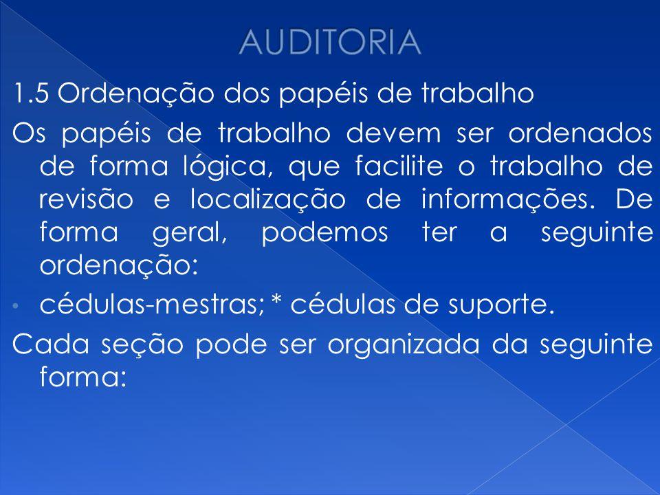 AUDITORIA 1.5 Ordenação dos papéis de trabalho