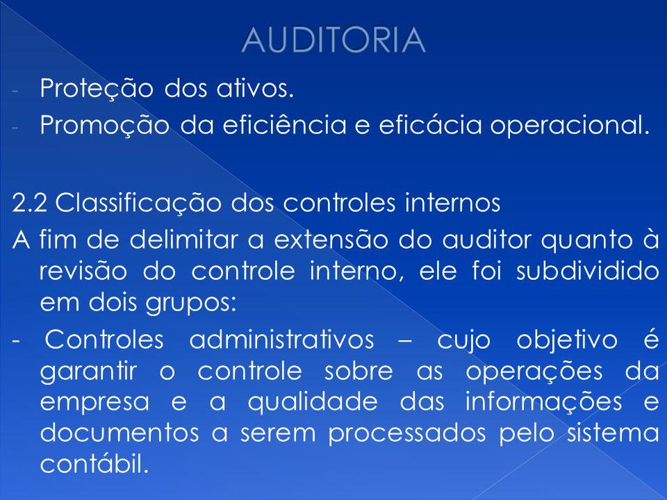 AUDITORIA Proteção dos ativos.