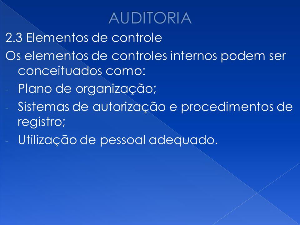 AUDITORIA 2.3 Elementos de controle