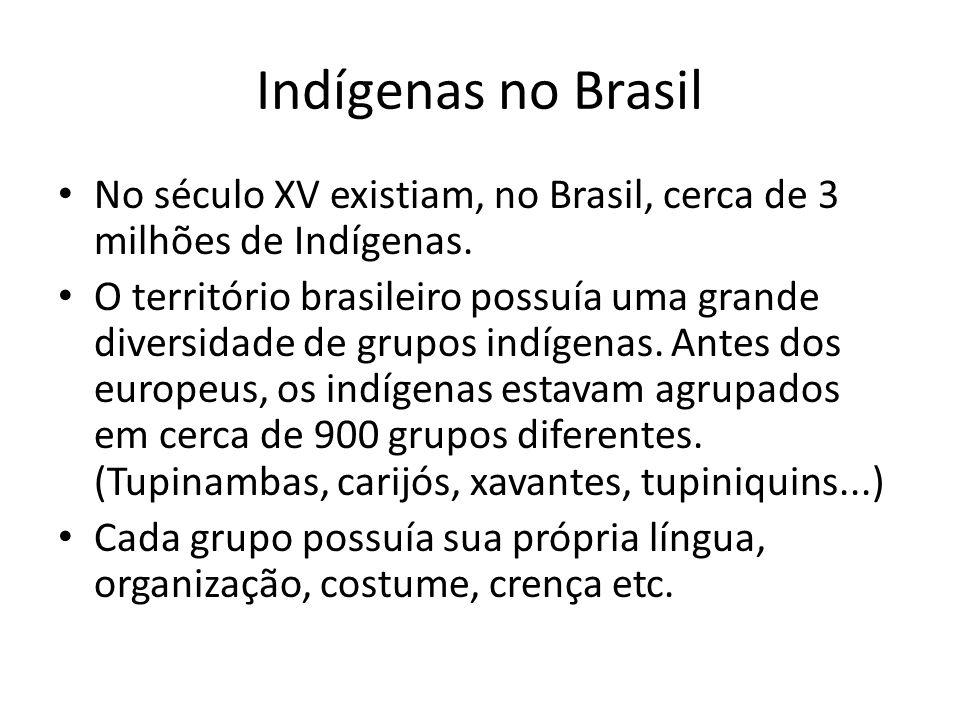 Indígenas no Brasil No século XV existiam, no Brasil, cerca de 3 milhões de Indígenas.