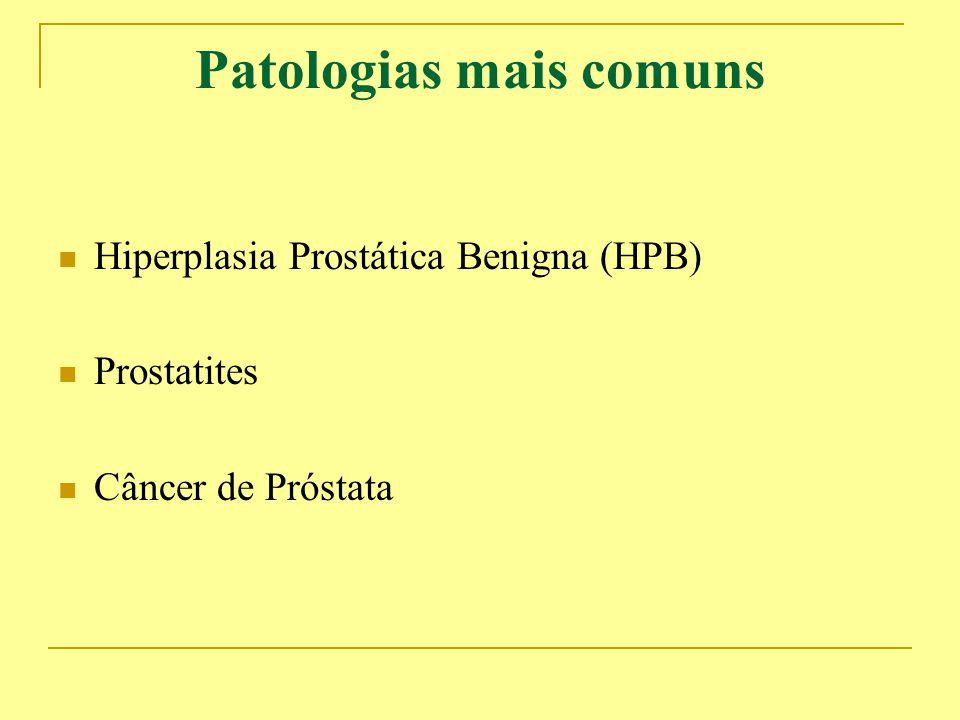 Patologias mais comuns