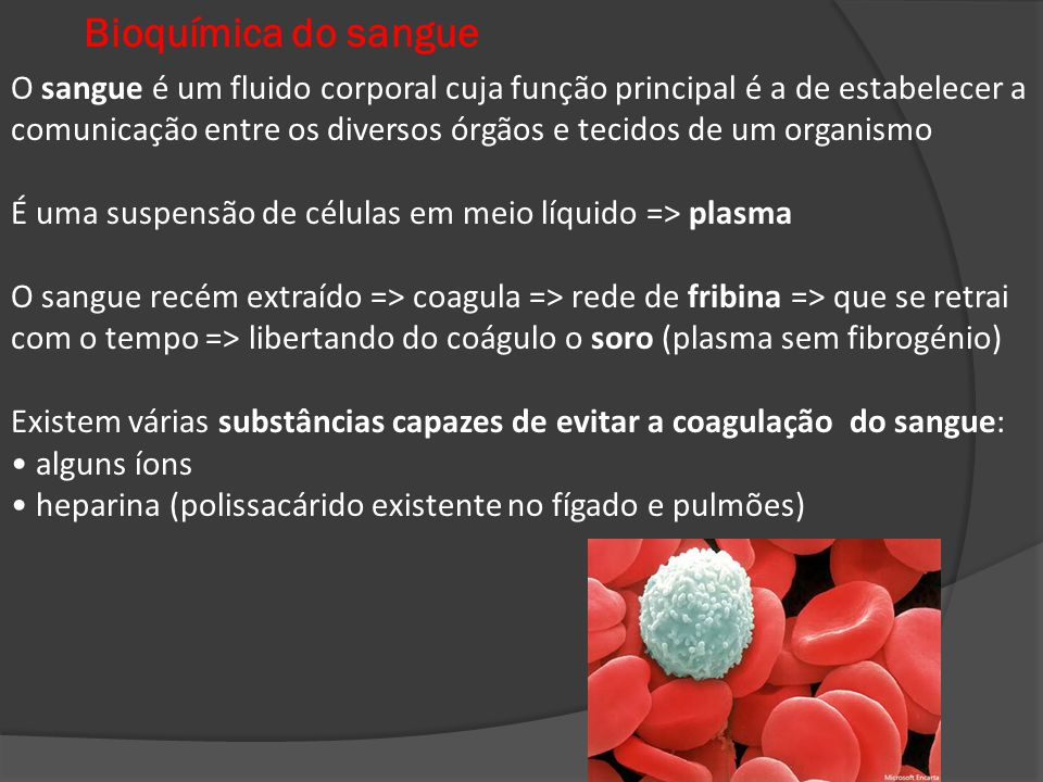 Bioquímica do sangue O sangue é um fluido corporal cuja função principal é a de estabelecer a.