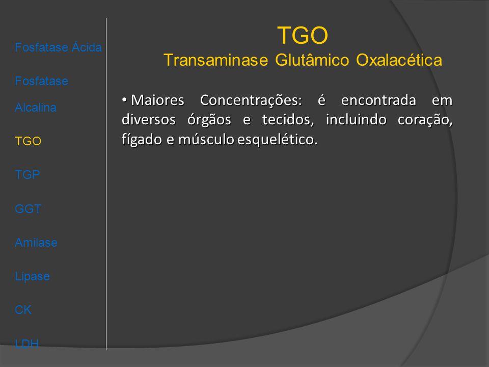 TGO Transaminase Glutâmico Oxalacética