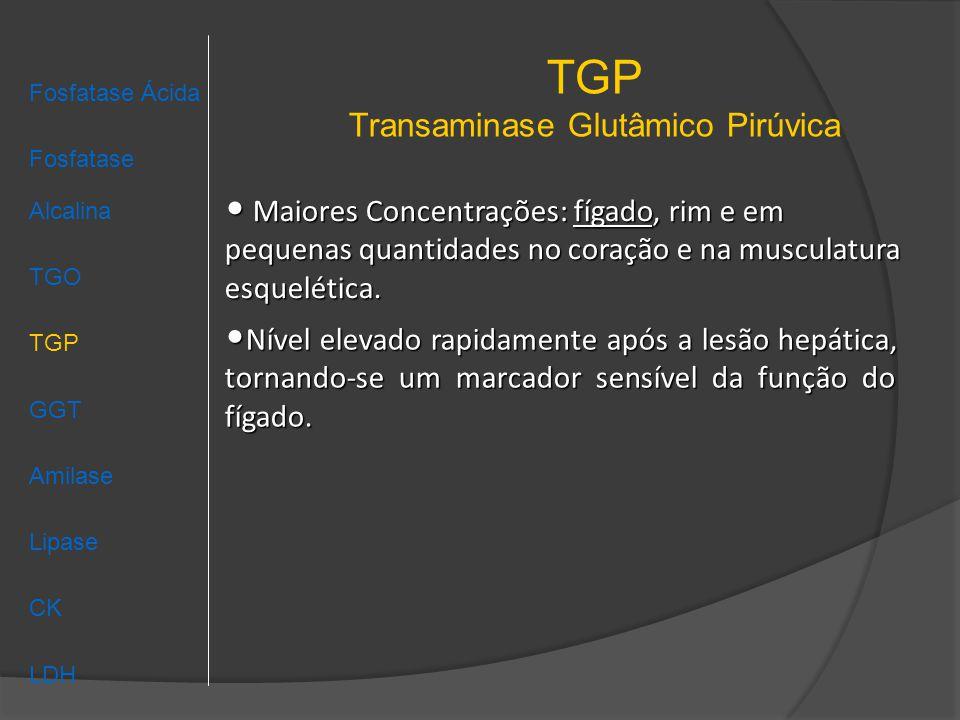TGP Transaminase Glutâmico Pirúvica