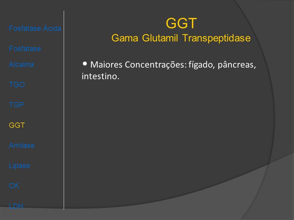 GGT Gama Glutamil Transpeptidase