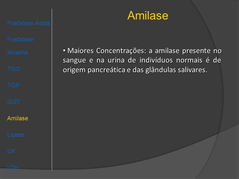 Amilase Fosfatase Ácida Fosfatase Alcalina TGO TGP