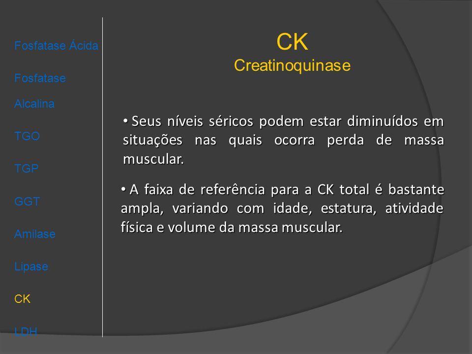 CK Creatinoquinase Fosfatase Ácida Fosfatase Alcalina TGO TGP GGT