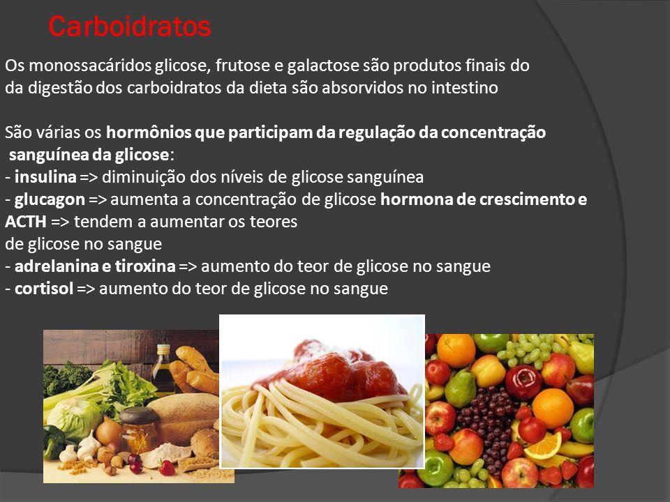 Carboidratos Os monossacáridos glicose, frutose e galactose são produtos finais do.