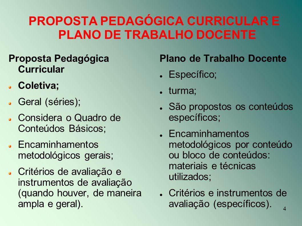 PROPOSTA PEDAGÓGICA CURRICULAR E PLANO DE TRABALHO DOCENTE