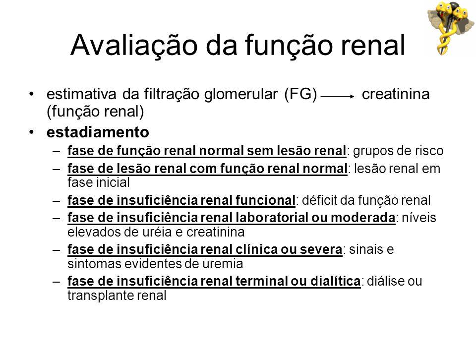 Avaliação da função renal