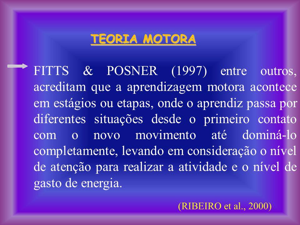 TEORIA MOTORA