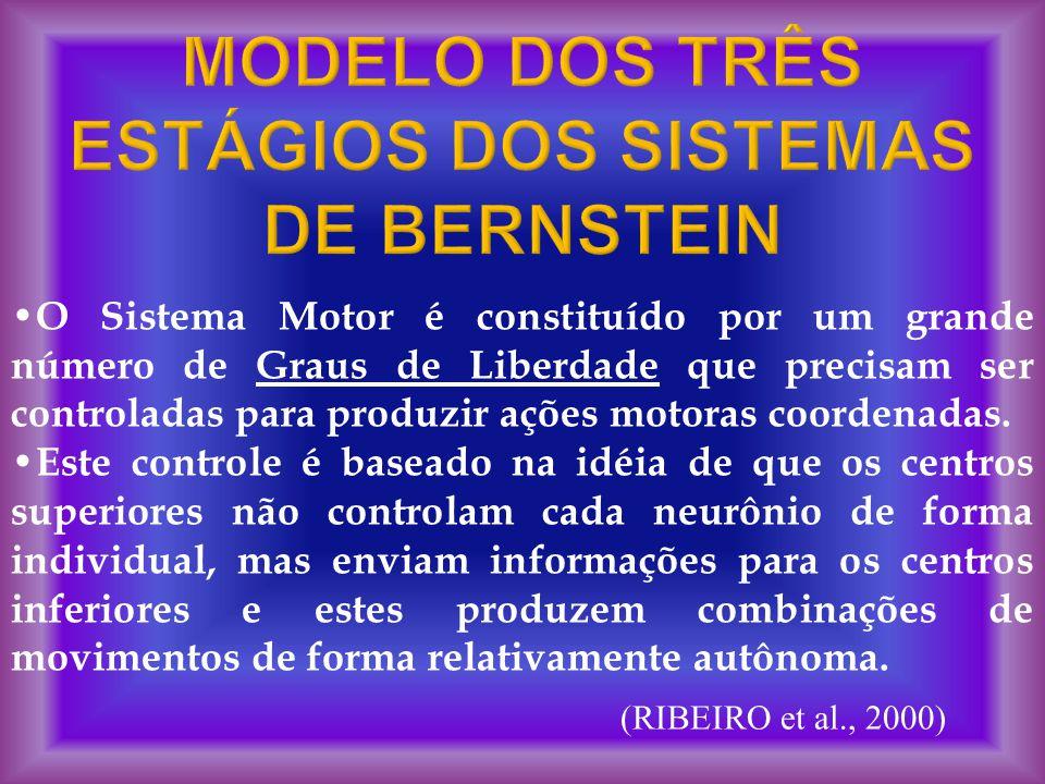 MODELO DOS TRÊS ESTÁGIOS DOS SISTEMAS DE BERNSTEIN