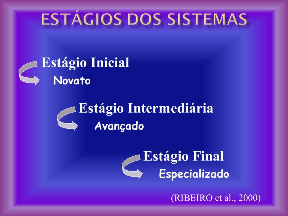 Estágios dos sistemas Estágio Inicial Estágio Intermediária