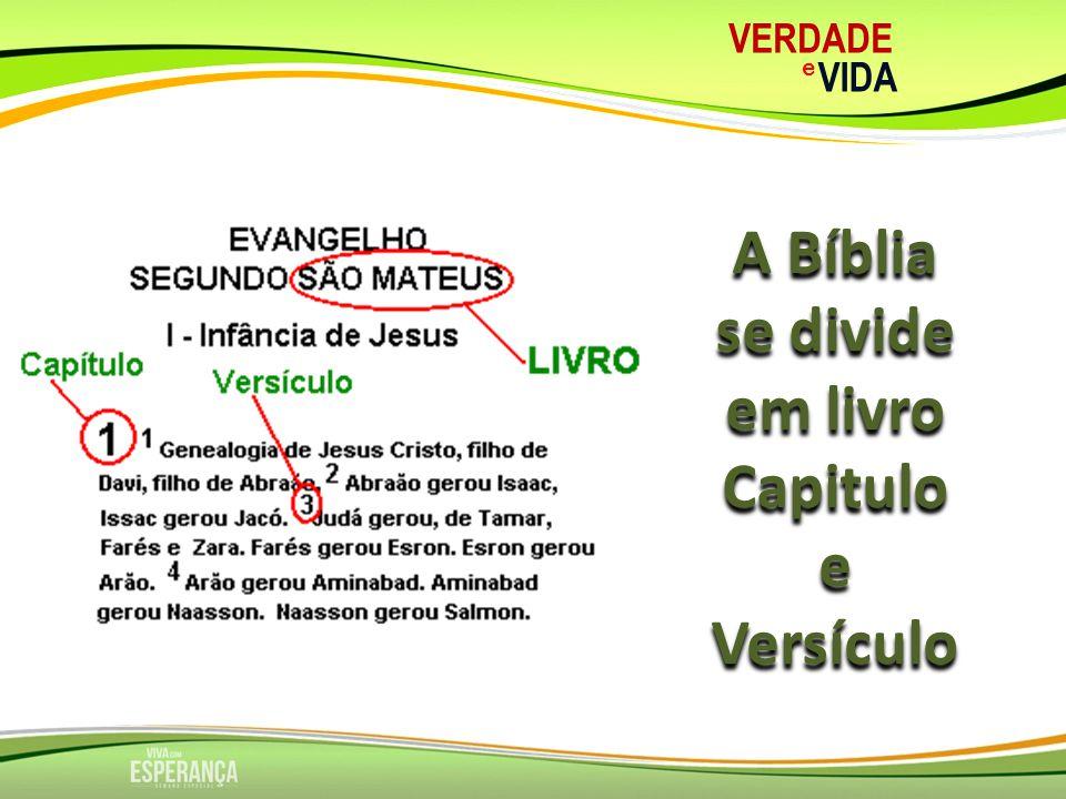A Bíblia se divide em livro