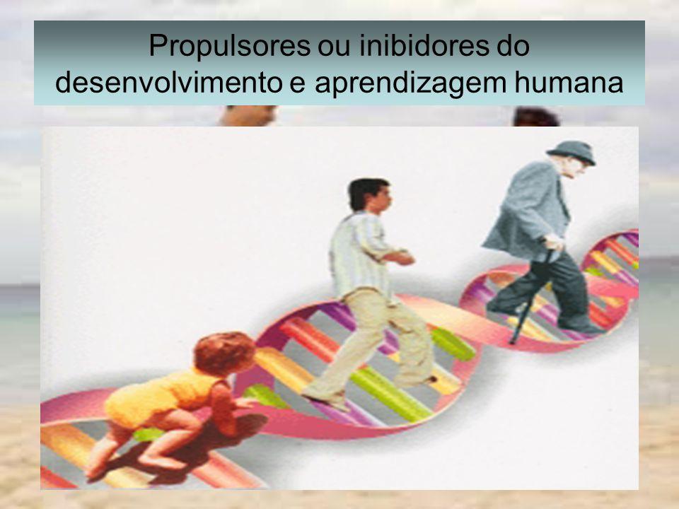 Propulsores ou inibidores do desenvolvimento e aprendizagem humana