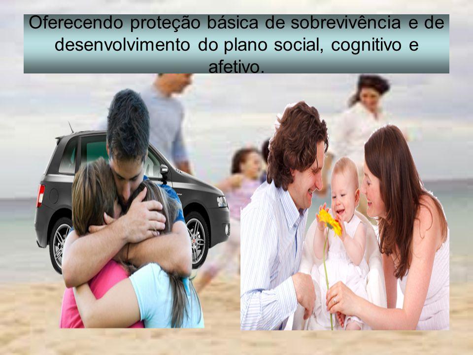 Oferecendo proteção básica de sobrevivência e de desenvolvimento do plano social, cognitivo e afetivo.
