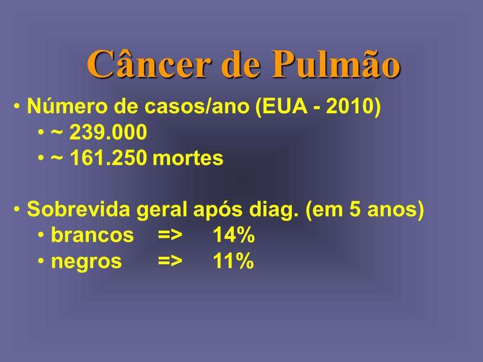Câncer de Pulmão Número de casos/ano (EUA - 2010) ~ 239.000