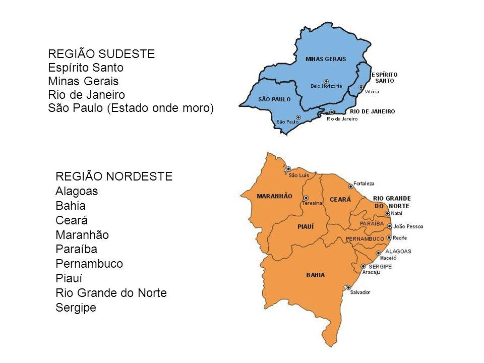 REGIÃO SUDESTE Espírito Santo. Minas Gerais. Rio de Janeiro. São Paulo (Estado onde moro) REGIÃO NORDESTE.