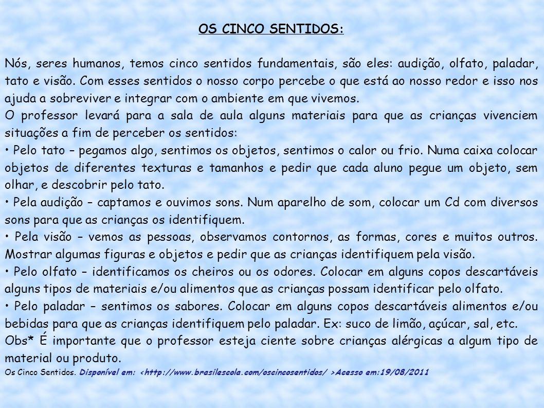 OS CINCO SENTIDOS: