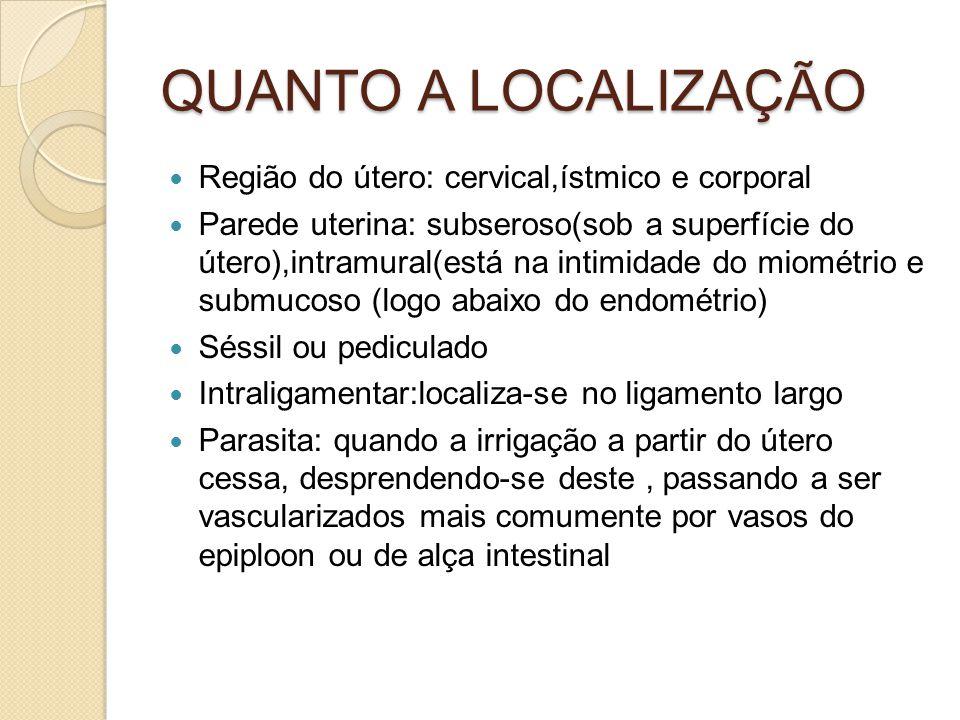 QUANTO A LOCALIZAÇÃO Região do útero: cervical,ístmico e corporal