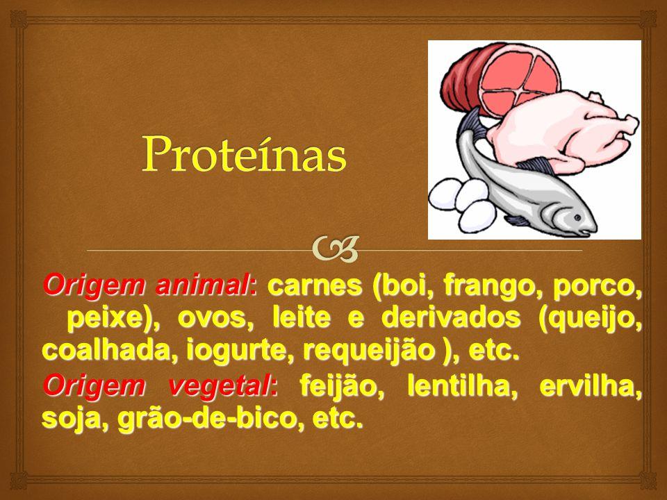 Proteínas Origem animal: carnes (boi, frango, porco, peixe), ovos, leite e derivados (queijo, coalhada, iogurte, requeijão ), etc.