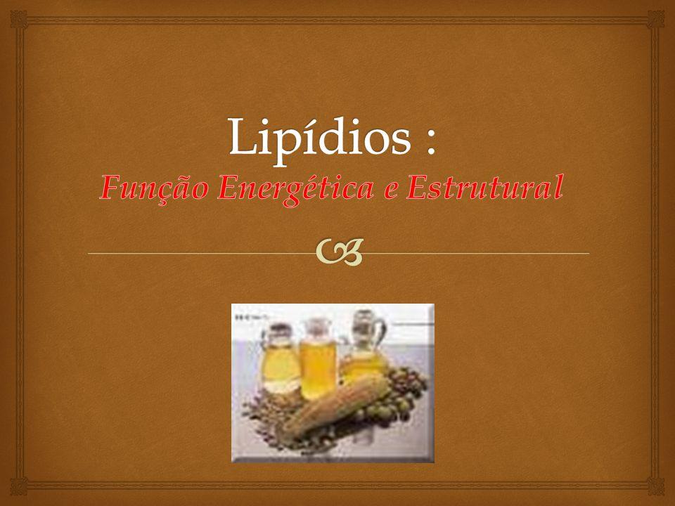 Lipídios : Função Energética e Estrutural