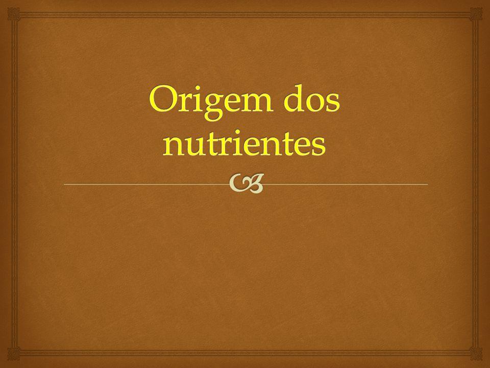 Origem dos nutrientes