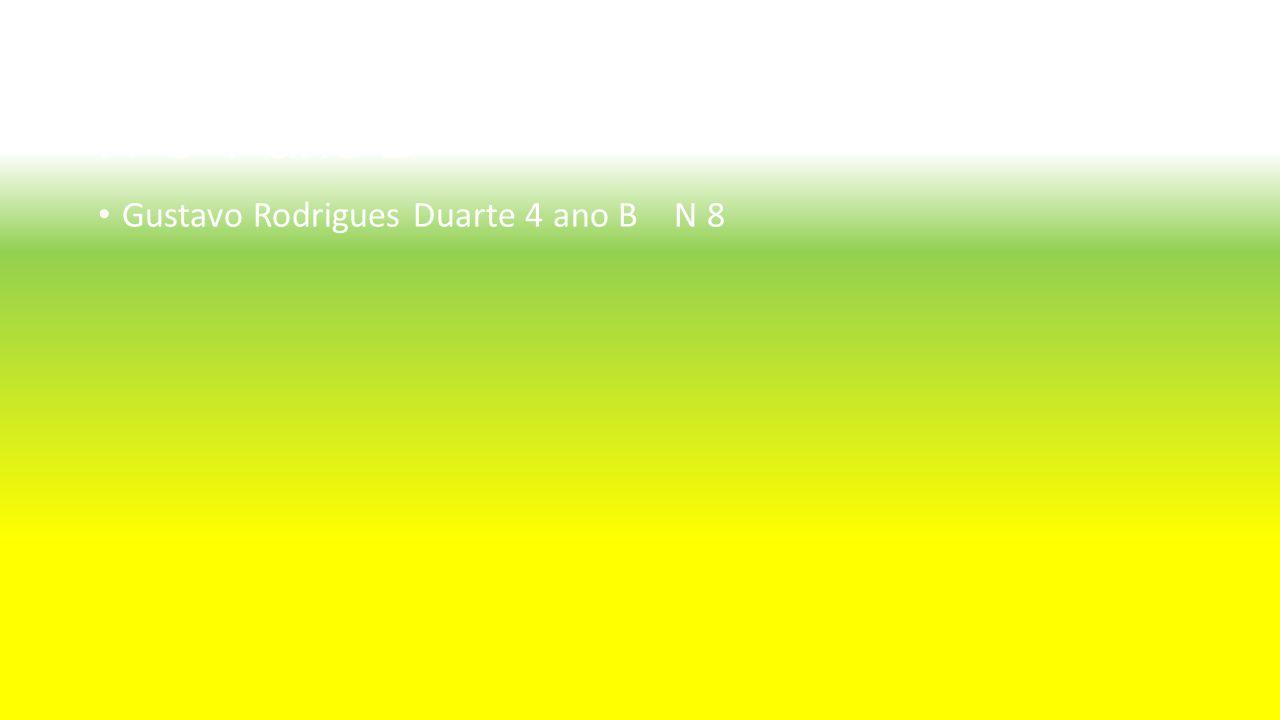 Aluno : Gustavo Rodrigues Duarte Nº8 4ºano B