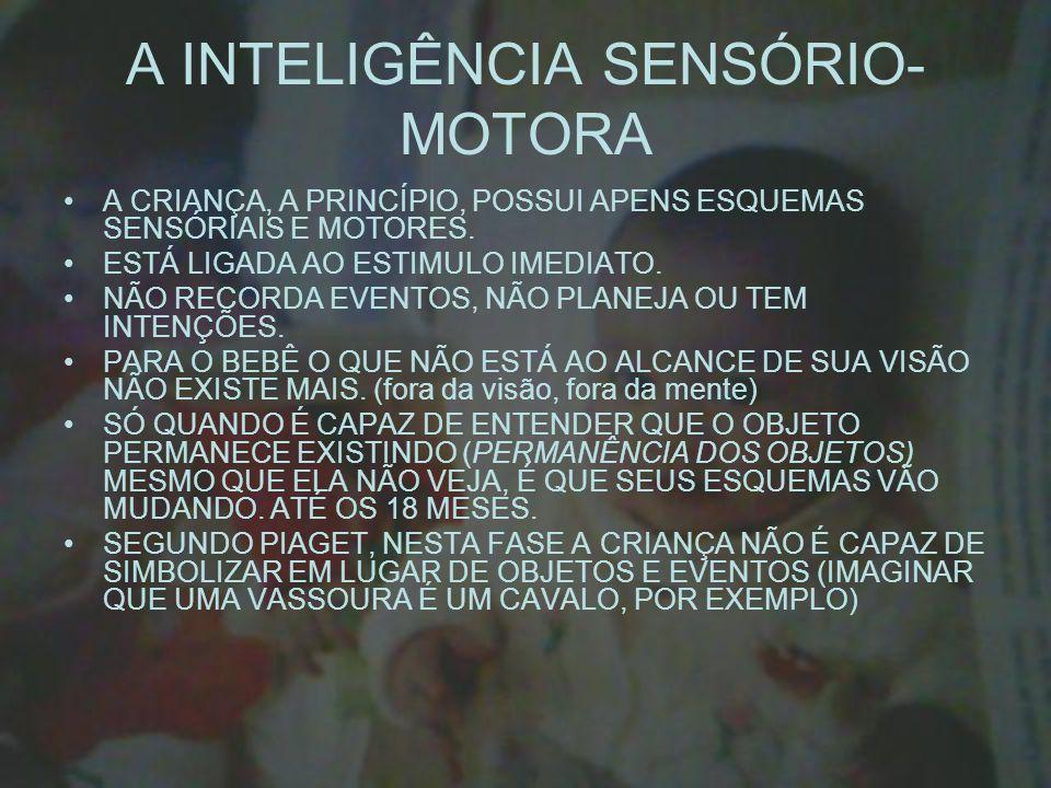 A INTELIGÊNCIA SENSÓRIO-MOTORA