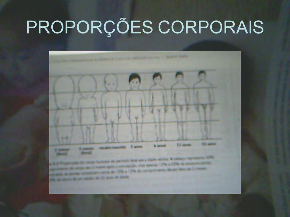 PROPORÇÕES CORPORAIS