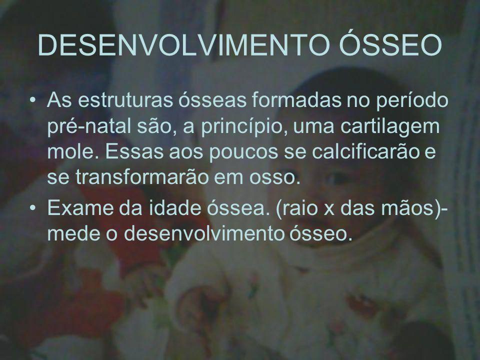 DESENVOLVIMENTO ÓSSEO