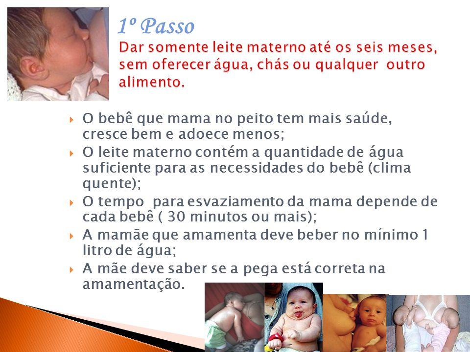 1º Passo Dar somente leite materno até os seis meses, sem oferecer água, chás ou qualquer outro alimento.