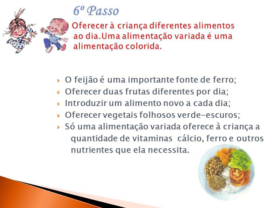 6º Passo Oferecer à criança diferentes alimentos ao dia