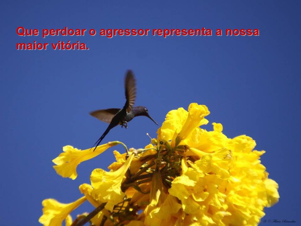 Que perdoar o agressor representa a nossa maior vitória.