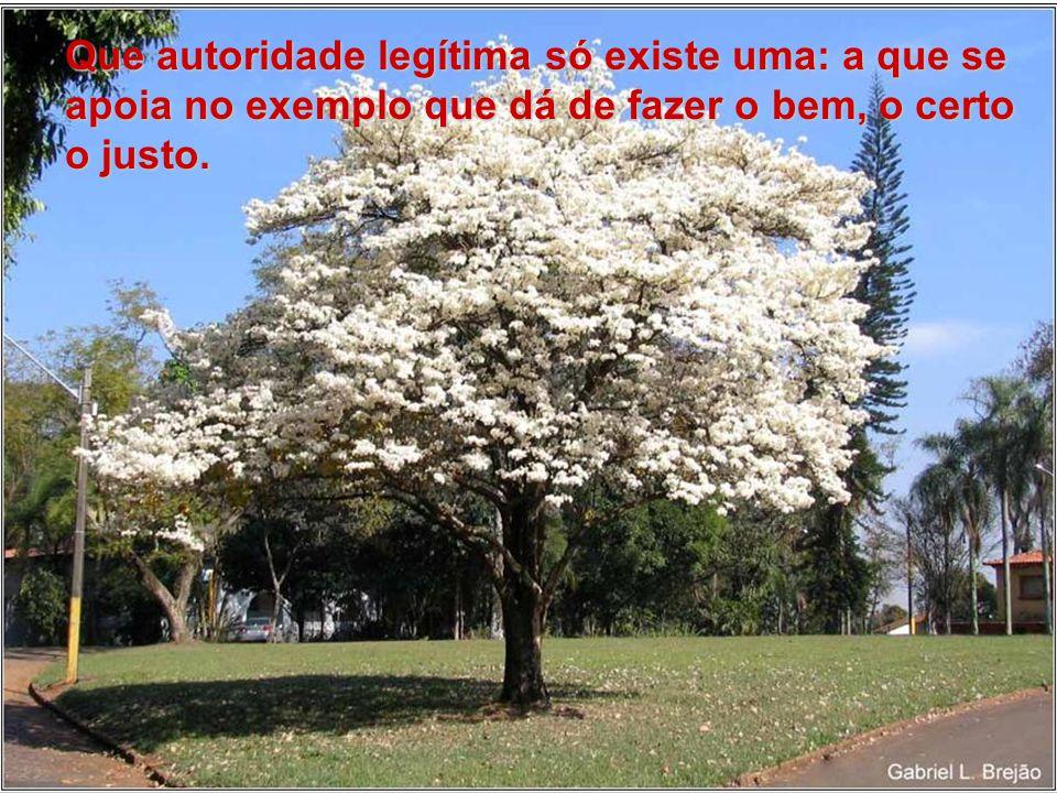 Que autoridade legítima só existe uma: a que se apoia no exemplo que dá de fazer o bem, o certo o justo.
