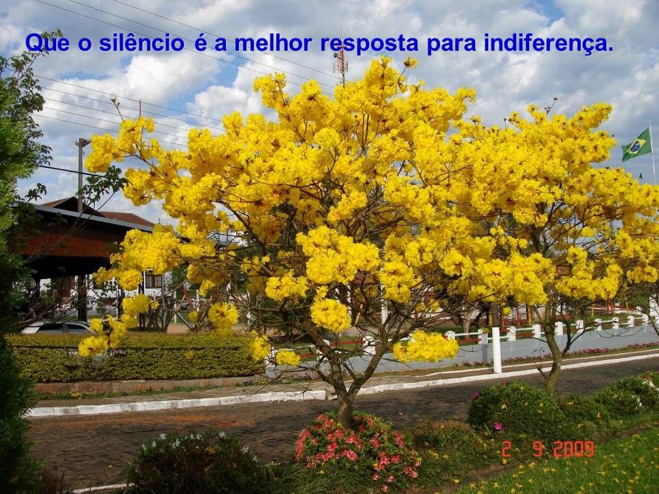 Que o silêncio é a melhor resposta para indiferença.