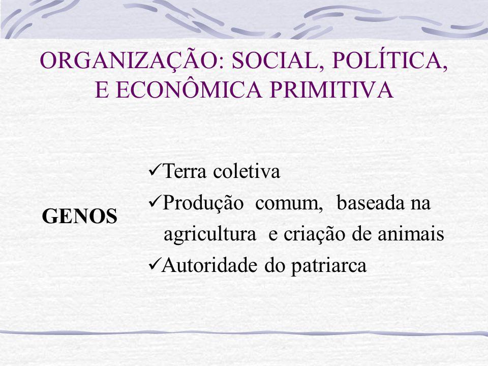 ORGANIZAÇÃO: SOCIAL, POLÍTICA, E ECONÔMICA PRIMITIVA