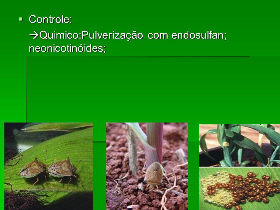 Controle: Quimico:Pulverização com endosulfan; neonicotinóides;