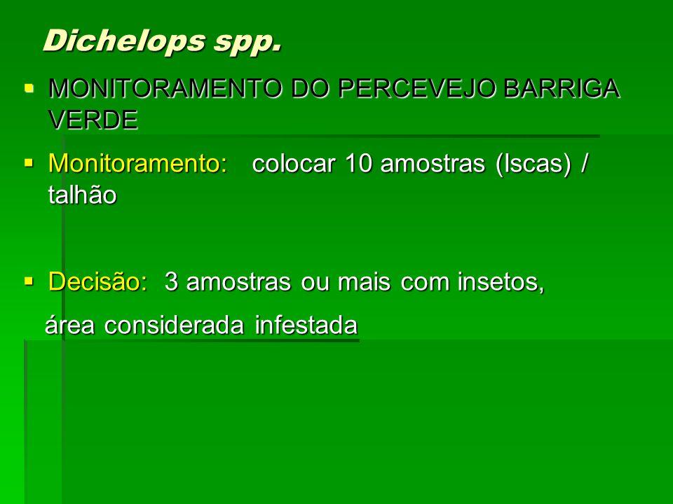 Dichelops spp. MONITORAMENTO DO PERCEVEJO BARRIGA VERDE