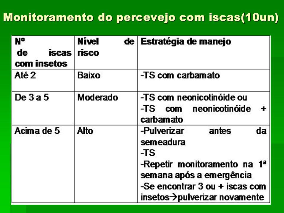 Monitoramento do percevejo com iscas(10un)