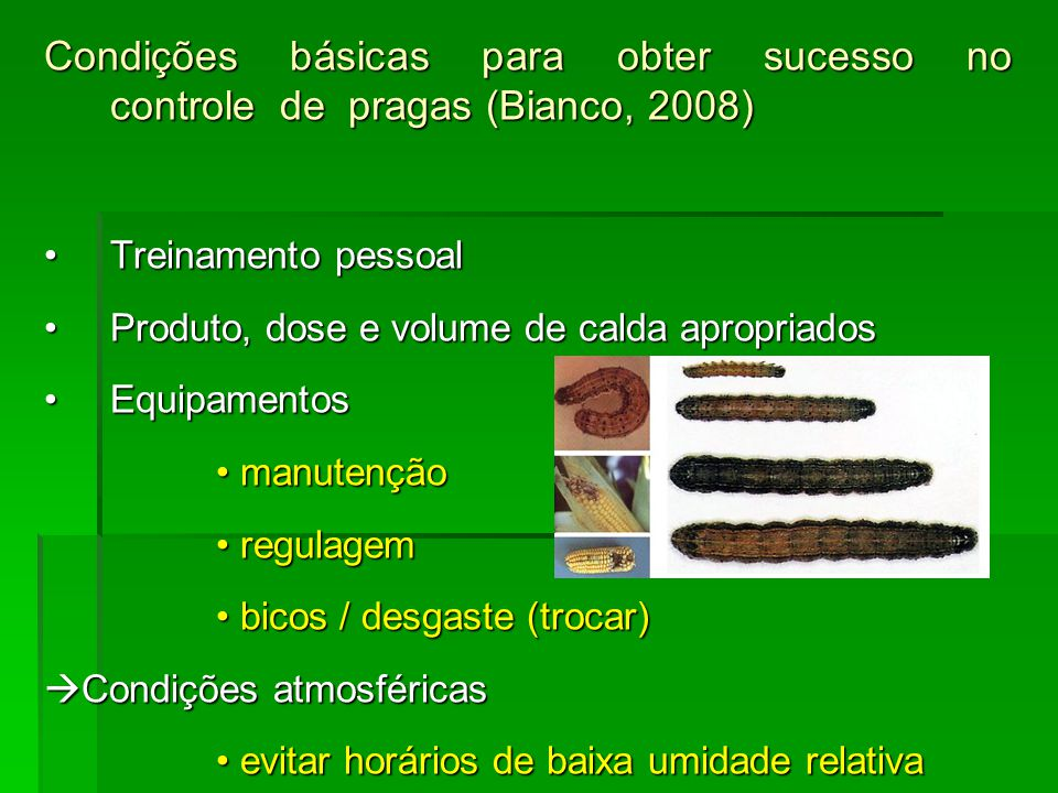Condições básicas para obter sucesso no controle de pragas (Bianco, 2008)