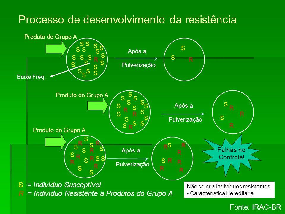 Processo de desenvolvimento da resistência