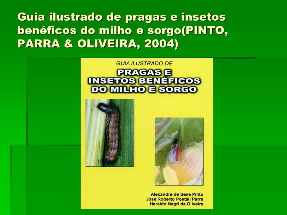 Guia ilustrado de pragas e insetos benéficos do milho e sorgo(PINTO, PARRA & OLIVEIRA, 2004)