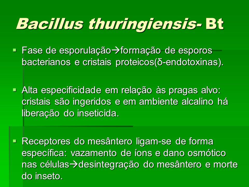 Bacillus thuringiensis- Bt