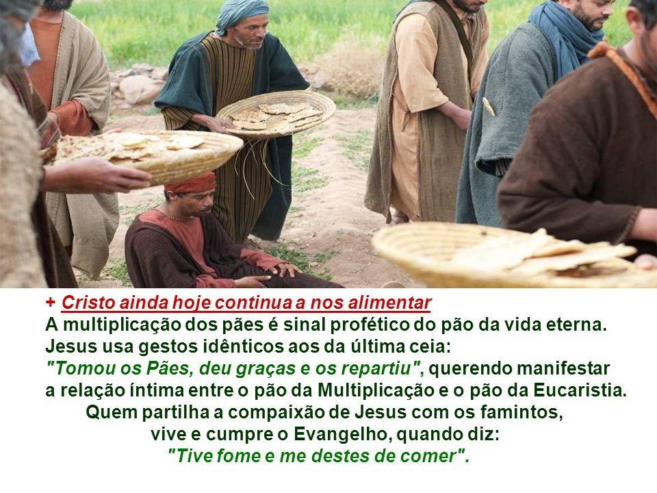 + Cristo ainda hoje continua a nos alimentar