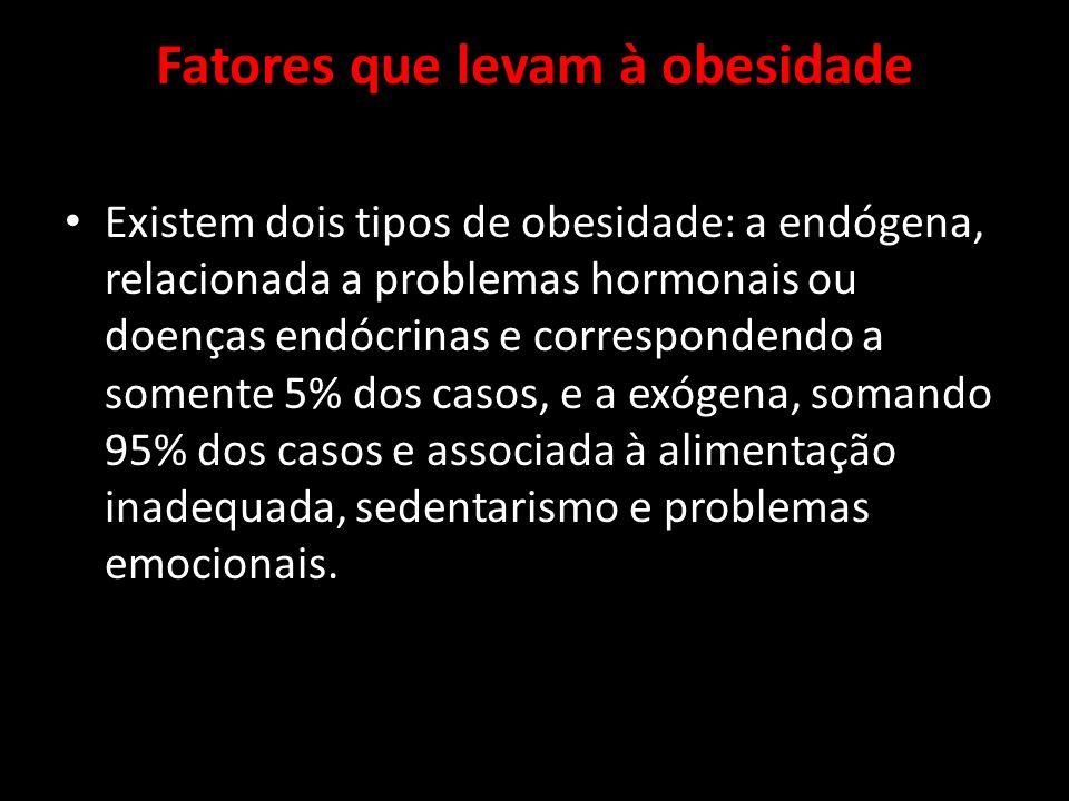 Fatores que levam à obesidade